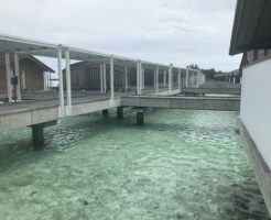 クラブメッドフィノールの桟橋